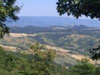 mastio colline vallombrosa