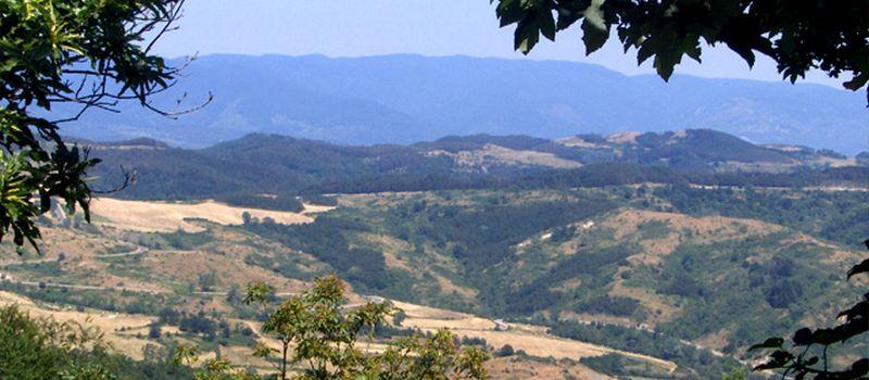 panorama sulla campagna di Vallombrosa - Firenze